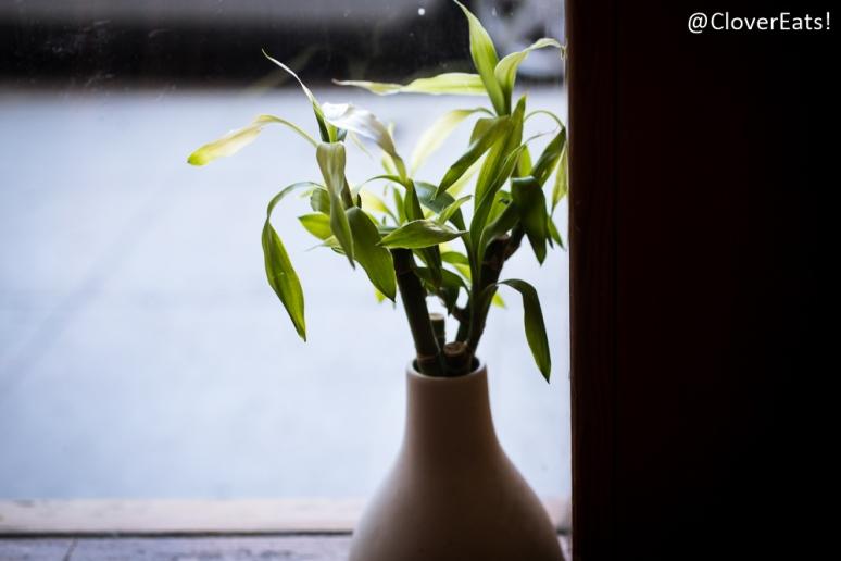 gardenfresh-3